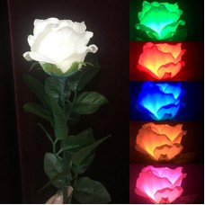 Five Color Light Rose
