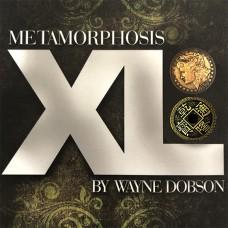 Metamorphosis XL - Wayne Dobson