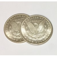 Morgan Dollar Replica Expanded Shell - Tail side